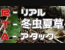 RTA(リアル冬虫夏草アタック)