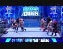 (WWE)3ブランド女子14人バトルロイヤル 8/14 スマックダウン