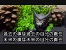 【写真】写真とひとこと(6)