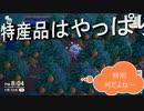 【あつまれ どうぶつの森】 第六十七幕 演舞公園島オレンジ農園開業!!新住民も登場するよ~