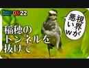 0822【カルガモ親子の兄弟喧嘩】悲劇の雛たち、奇形・怪我。ハクセキレイ、ショウジョウトンボ、カワセミ幼鳥、野鳥の会など【今日撮り野鳥動画まとめ】身近な生き物語