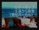 シティポップ(男性ボーカル)MIX 王道から散策 ●japanese city pop AOR main street male vocalists