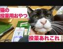 猫のQOL維持の秘密兵器、色々な投薬用おやつに挑む