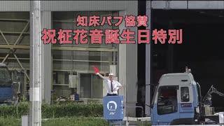 【高知競馬】祝柾花音誕生日特別