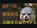 9月1日 お誕生日おめでとうございます。マクタンが 心込めておめでとうっていう動画です。(^▽^)/