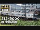 【JR東海】313系5000番台 in 東海道線 〜Collection Vol.02〜