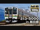 【JR東海】213系5000番台 in 飯田線 ~Collection Vol.10~