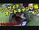 【ハイエースキャンピングカーで行く犬連れ旅】休暇村 南淡路 シーサイドオートキャンプ場②