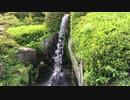 初秋の半べい庭園 聚花山の庭(Syukazan Garden)ショート版   広島市南区本西浦