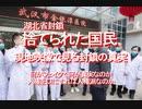 【みちのく壁新聞】2020/02-湖北省封鎖、捨てられた国民、現地映像で見る封鎖の真実