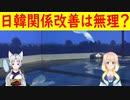 「首相になる前から挑発的な態度だ」韓国さんが菅さんが首相になったら日韓関係の改善は無理だと嘆く?【世界の〇〇にゅーす】