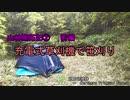 【山林開拓記② 前編】 充電式草刈機で笹刈り 【マキタMUR368LDG2】