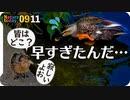 0911【カルガモ親子?一人ぼっちのコガモ】カラス幼鳥と捕食シジュウカラ、チョウゲンボウ飛翔やムクドリの蜘蛛捕食、ギンヤンマ産卵など【今日撮り野鳥動画まとめ】 #身近な生き物語