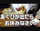 秋の夜長に見る動画・前編