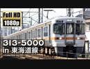 【JR東海】313系5000番台 in 東海道線 〜Collection Vol.03〜