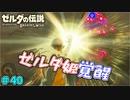 【続編決定記念】のんびりと伝説「ゼルダの伝説~ブレスオブザワイルド~」 #40