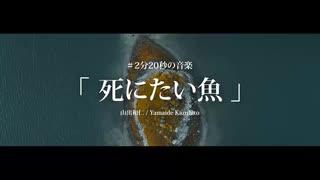 死にたい魚 | 山出和仁 / Yamaide Kazuhito