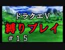 【アルカリ性】26周目だし、縛りプレイで楽しもう!【ドラクエ5シーズン1 Part15】