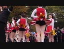 東京大学 運動会応援団 チアダンス