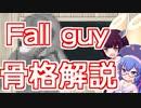 【Fall guy骨格解説】医者志望ウナきりの3分でわかる解剖学