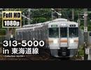 【JR東海】313系5000番台 in 東海道線 〜Collection Vol.04〜