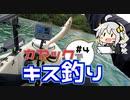 カヤックフィッシング #4 カヤックでキス釣り!【VOICEROIDフィッシング】