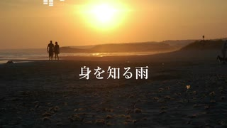 【AI謡子オリジナル曲】身を知る雨【NEUTRINO】