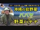沖縄の島野菜の話 ボギー大佐の言いたい放題 2020年09月27日 21時頃 放送分