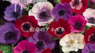 【AIきりたんオリジナル曲】宿命のアネモネ