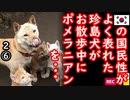 犬好きの方、視聴注意... 【江戸川 media lab HUB】お笑い・面白い・楽しい・真面目な海外時事知的エンタメ