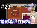 #23【DQ5】ドラゴンクエスト5で癒される!!婚約者に立候補!【女性実況】
