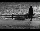 【ニコニコ動画】高音質な名曲 楔-くさび-を解析してみた
