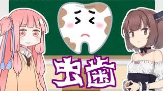 【教えてきりたん】虫歯にならない最大の秘訣【VOICEROID解説】