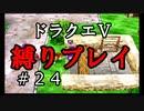 【アルカリ性】新しい縛りを公開!26周目の縛りプレイ!【ドラクエ5シーズン1 Part24】