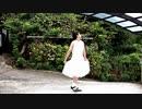 【アニー】アトラクトライト【踊ってみた】