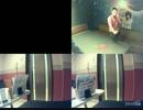 紅蓮華(TVサイズ)/LiSA