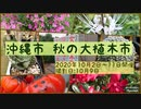 2020年 沖縄市 秋の大植木市