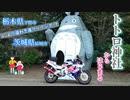 【バイク動画】栃木県下野市⇒茨城県結城市 秋空ツーリング (CBR400RR)(NC29)