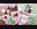 【こなみ】イトデンワ 踊ってみた【teamCatteya卯花】