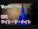 【東京ディズニーランド】花火『ライト・ザ・ナイト』