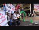 2020.10.11 日本第一党 鹿児島県本部による移民政策に断固反対する街宣 2-1