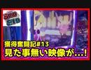 【メダルゲーム】限界突破獲得奮闘記13日目「スマッシュスタジアム」