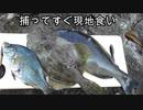 【ぴ】モリ突きからの現地食い!絶品三種の魚料理