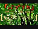 【ニコカラ】(米津玄師) パプリカ / Foorin【アコギ(+5)】【off vocal】