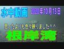水中動画(2020年10月13日)in 根岸湾