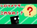 【ネタバレなし/カルチャーショック】白爪草を見たら...シロツメクサがこれ!?【023】