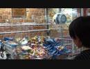 【ゲームセンター】お菓子のクレーンゲームに挑戦するあい❤採れそうで取れないwww