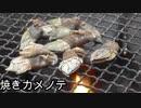 【ぴ】カメノテ採って食べよう!炭火焼