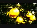【ボカロ重唱】混声合唱組曲「雨」Ⅴ.雨の日に見る