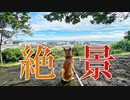 【ほのぼの動画】柴犬ももっぷがドラマロケ地の高台に行ってきたなの